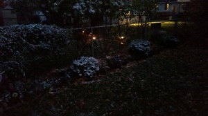 "This was on Wednesday night of this past week. I just had arrived home from work and snapped this pic of our first ""snow"" in my backyard. It looked pretty to me."