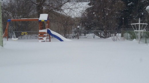 I took this yesterday morning. Can you believe this? That's just accumulation, and not shoveled or piled snow!