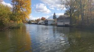 Ellicott Creek in the fall.