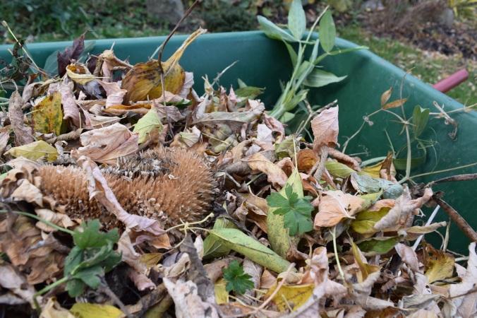 Garden rubbish at its best!